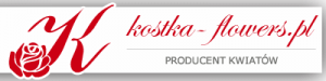 Producent kwiatów Kostka - flowers